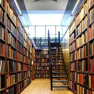 Библиотеки Кулунды
